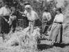 Arató munkások 1930